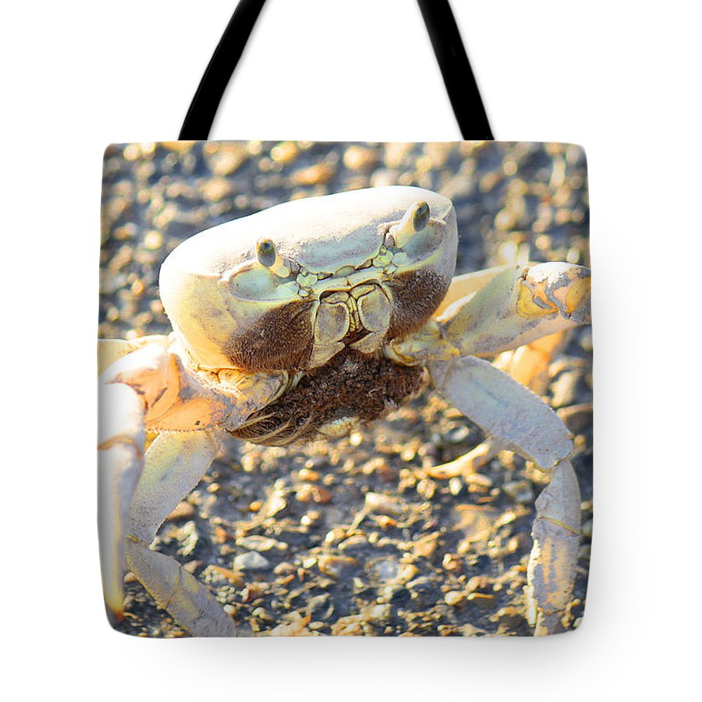 Roena King Tote Bag featuring the photograph Which Way Is The Water by Roena King