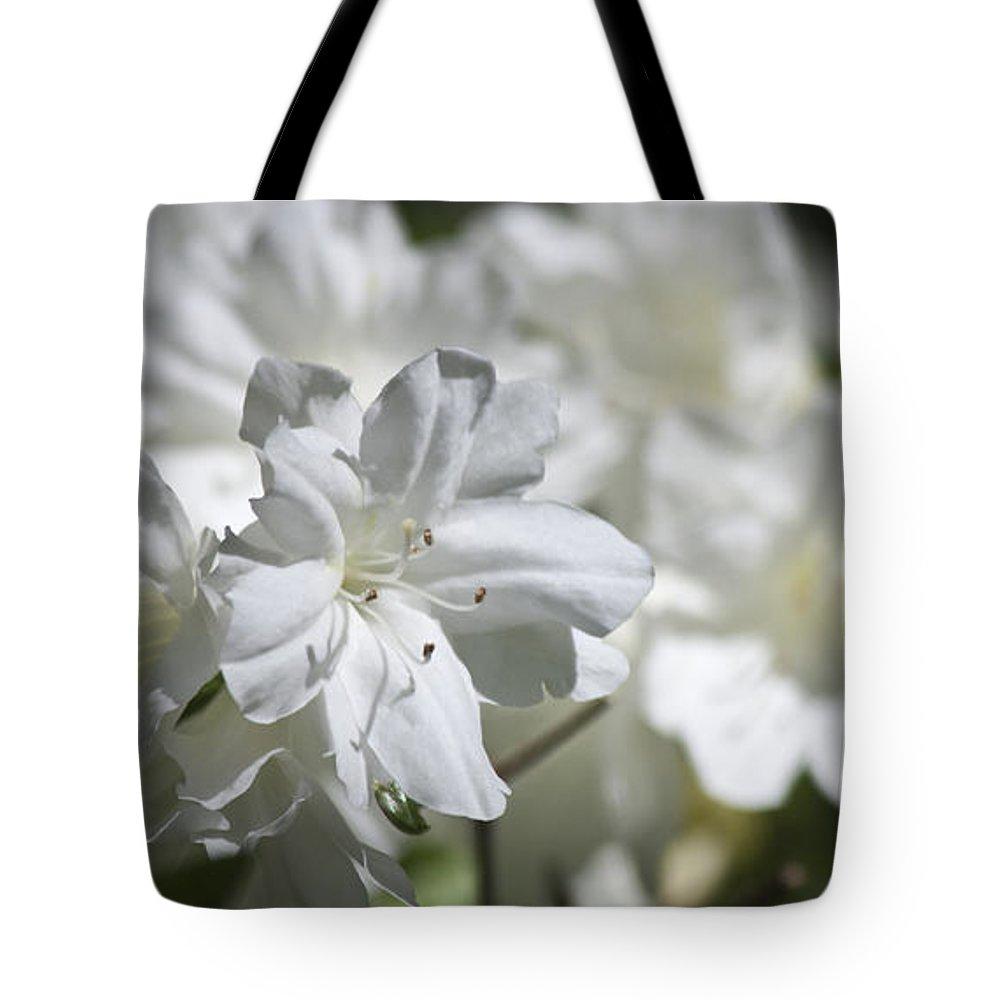 Azalea Tote Bag featuring the photograph White Beauty by Teresa Mucha
