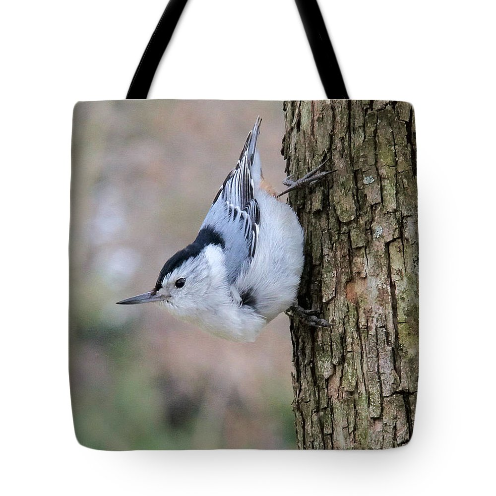 White-breasted Nuthatch Tote Bag featuring the photograph White-breasted Nuthatch by Doris Potter