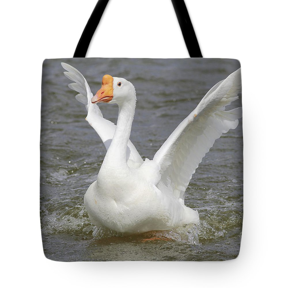Goose Tote Bag featuring the photograph White Goose by Deborah Benoit