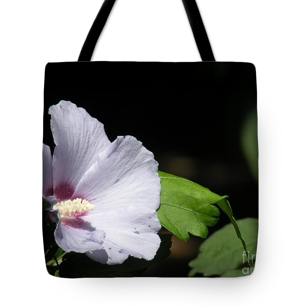 Flower Pictures Tote Bag featuring the photograph White Hibiscus by Saundra Lane Galloway
