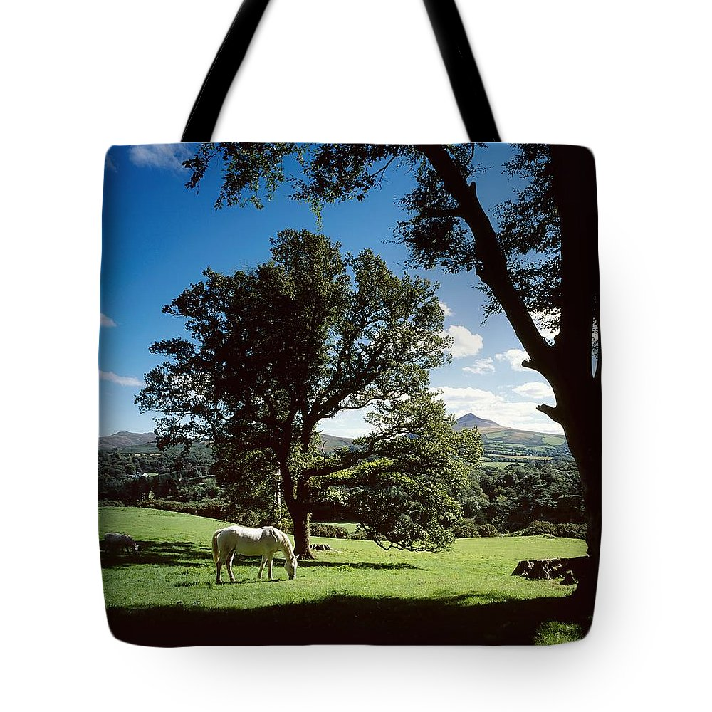 Enniskerry Tote Bag featuring the photograph White Horse At Powerscourt, Co Wicklow by The Irish Image Collection