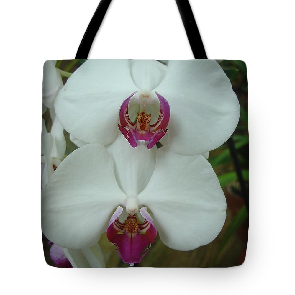 Orchid Tote Bag featuring the photograph White Orchid by Charles and Melisa Morrison