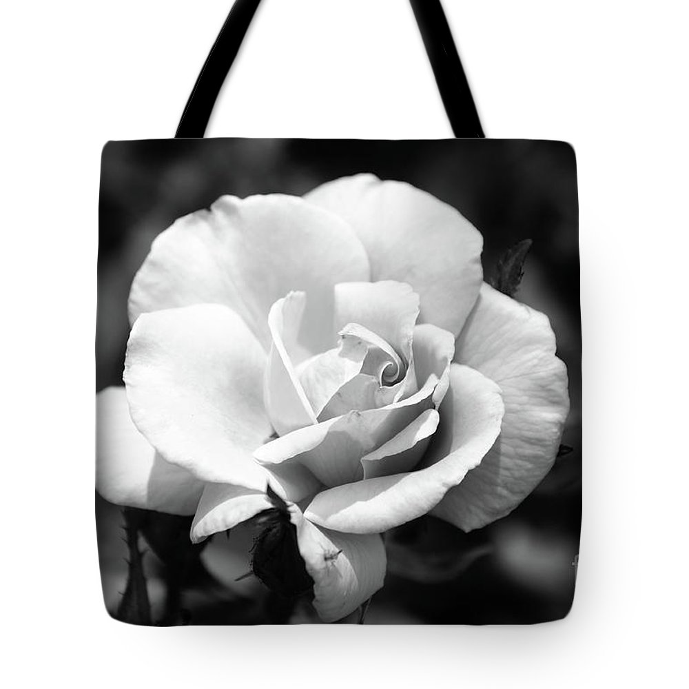 Rose Tote Bag featuring the photograph White Rose by Ronald Grogan