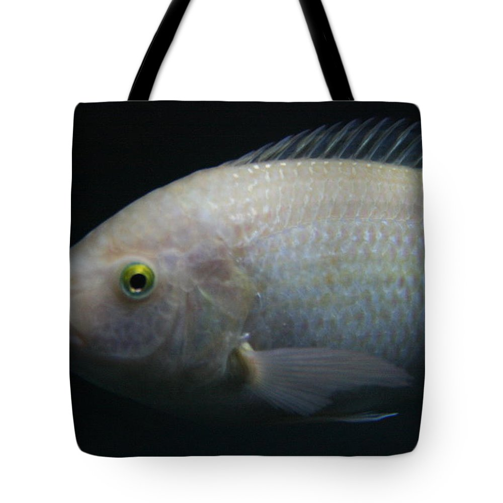 Jennifer Bright Art Tote Bag featuring the photograph White Tilapia With Yellow Eyes by Jennifer Bright