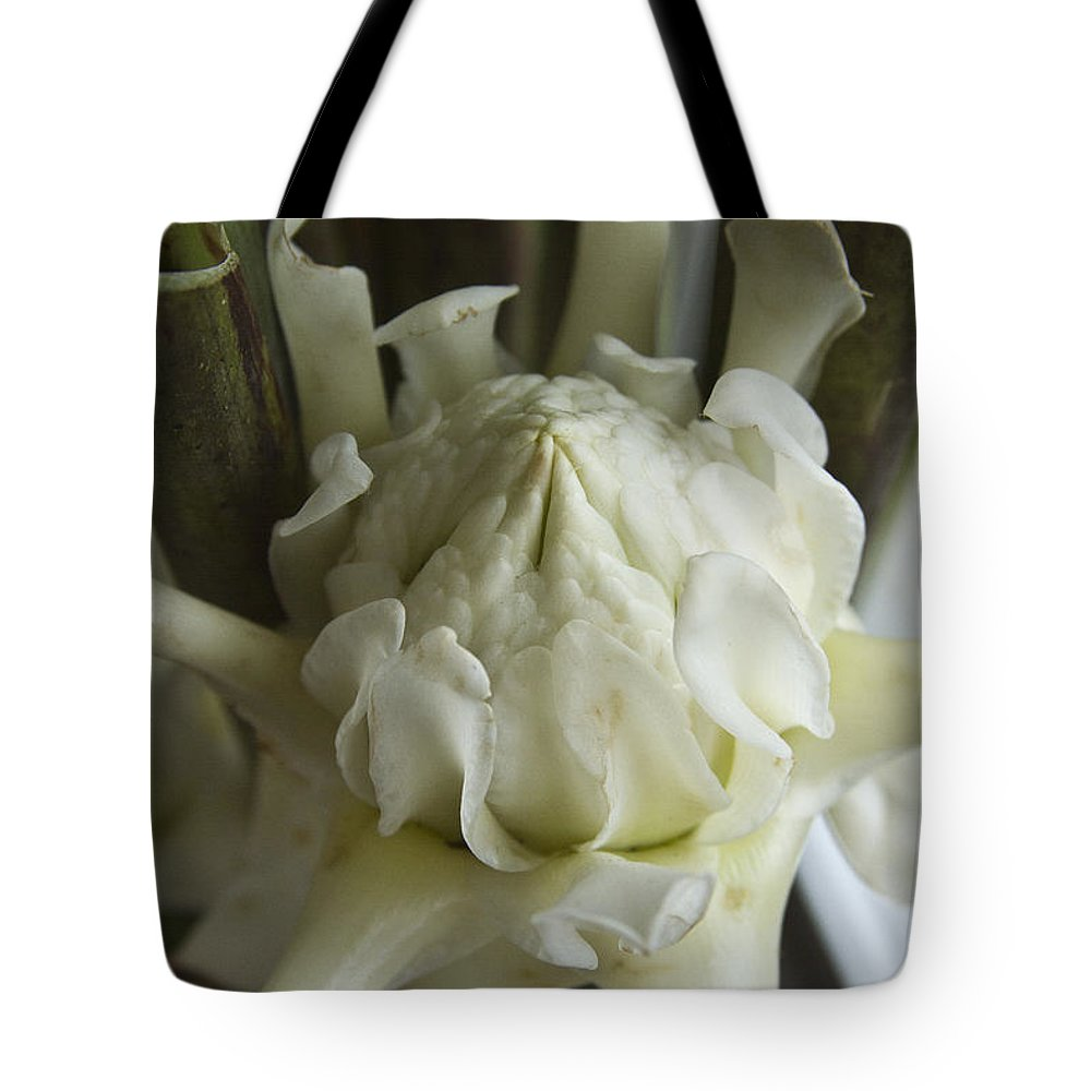 Ginger Flower Tote Bag featuring the photograph White Torch Ginger by Heiko Koehrer-Wagner