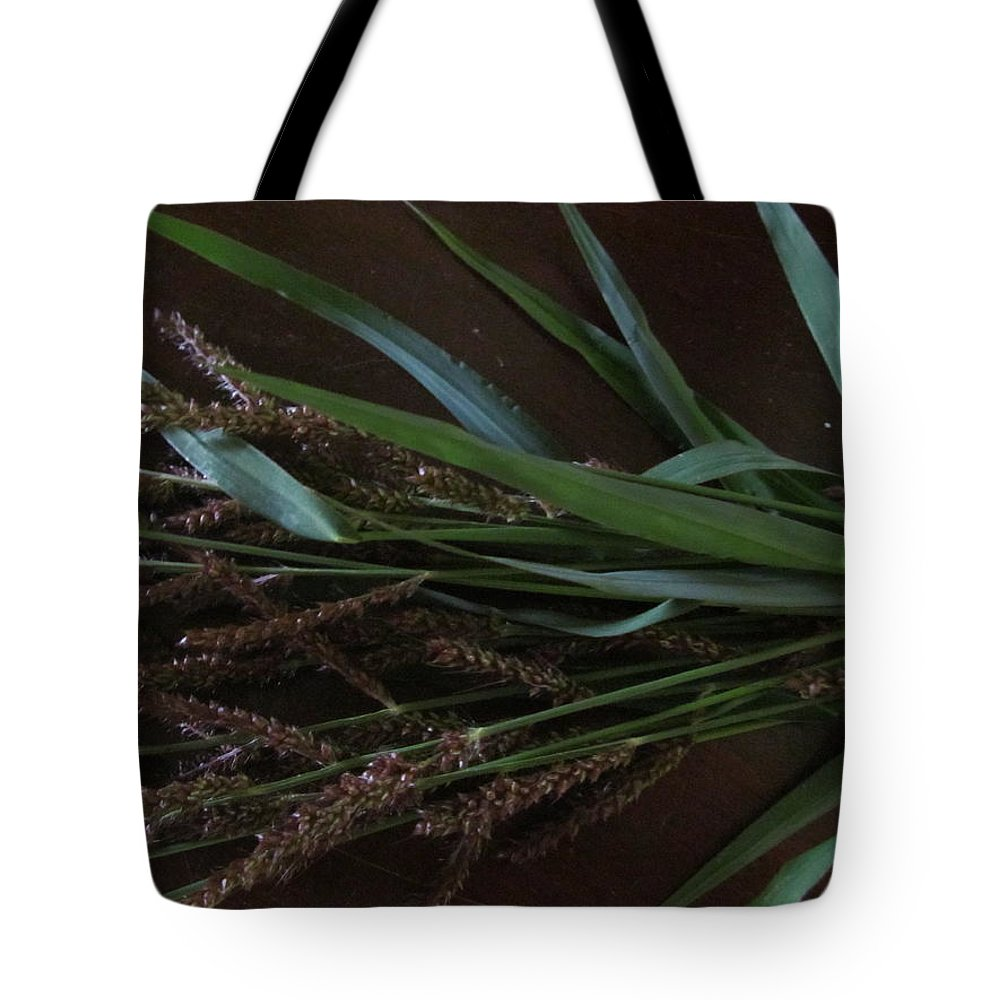 Tote Bag featuring the photograph Wild Brown Grass by Tina M Wenger