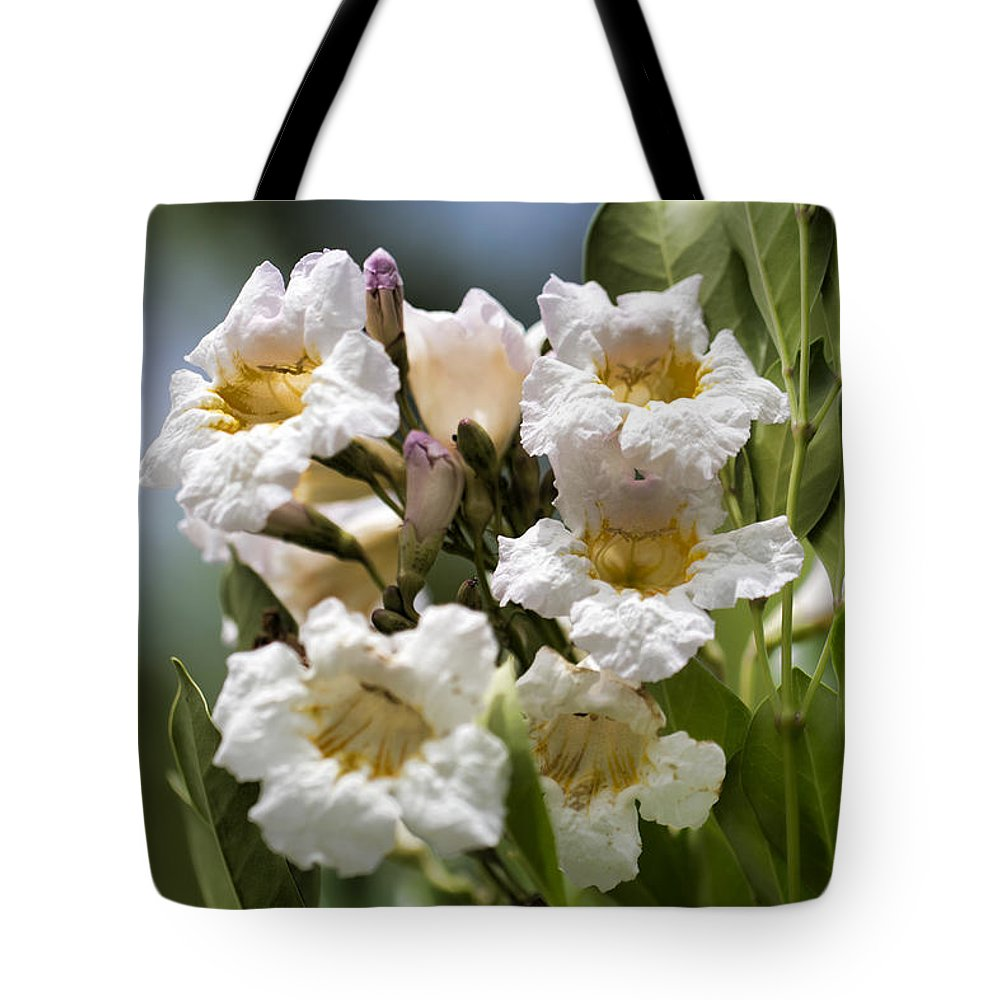 Wild Flowers Tote Bag featuring the photograph Wild Flowers by Douglas Barnard