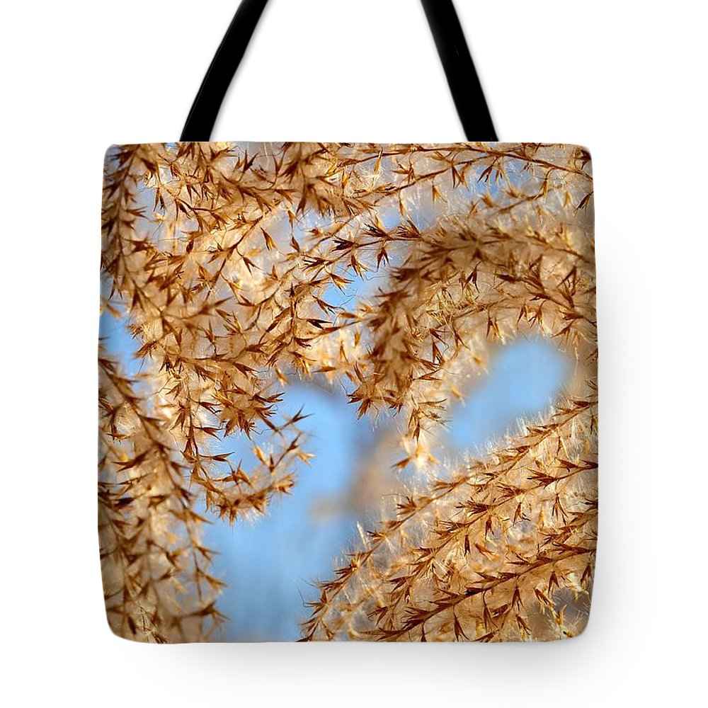 Grass Tote Bag featuring the photograph Wild Grasses Against A Blue Sky by Elaine Manley