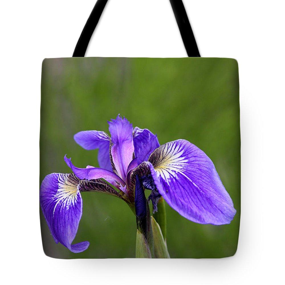 Doug Lloyd Tote Bag featuring the photograph Wild Iris by Doug Lloyd