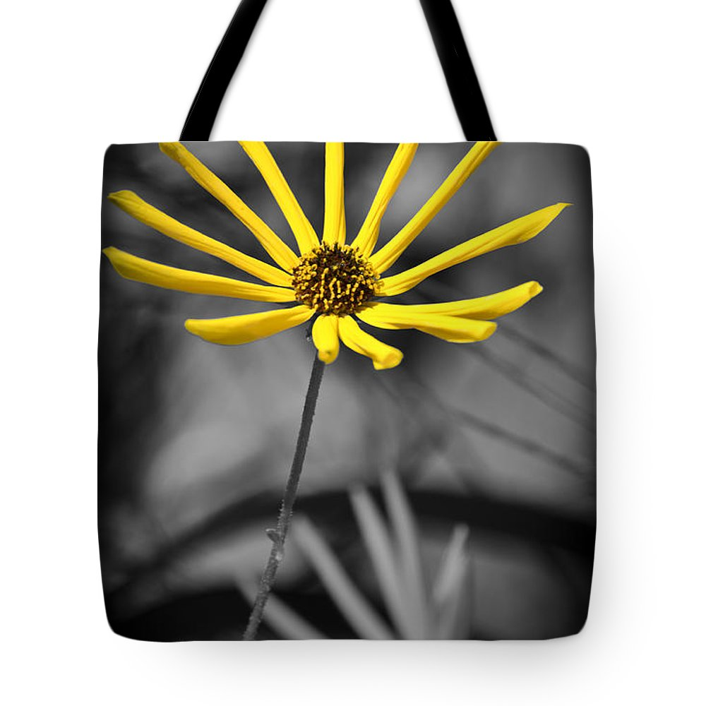 Flowers Tote Bag featuring the photograph Wild Swamp Daisy by Carolyn Marshall