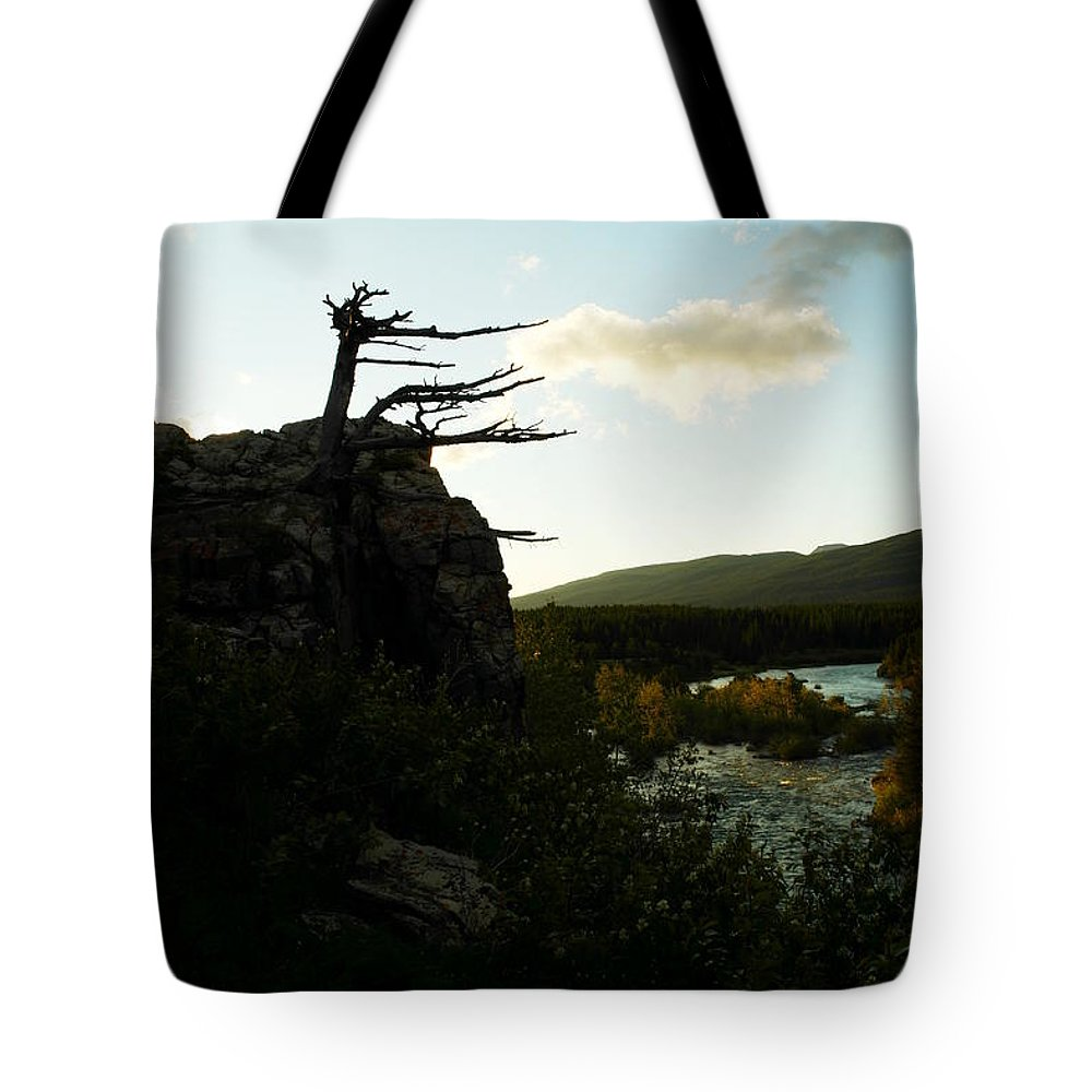Trees Tote Bag featuring the photograph Wind Blown Tree At Many Glacier by Jeff Swan