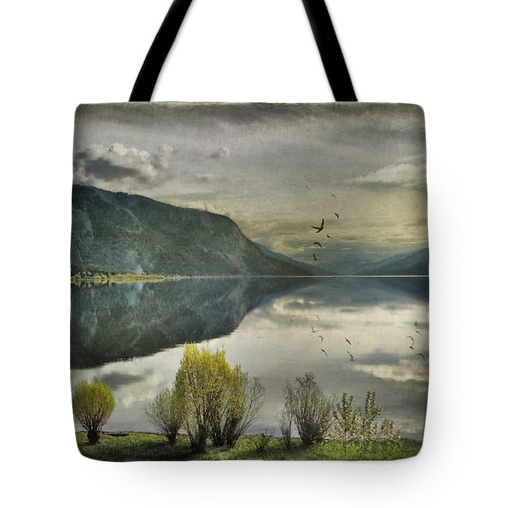 Mountains Tote Bag featuring the photograph Window View by Kym Clarke