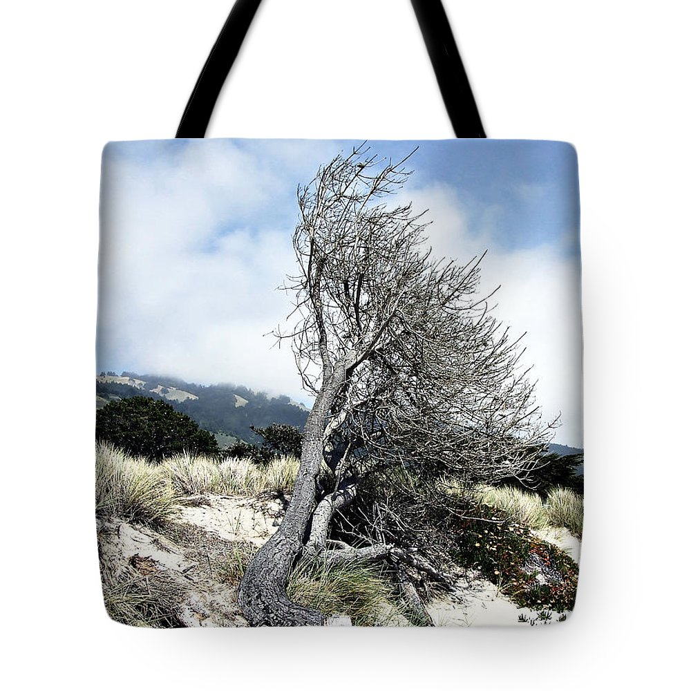 Tree Tote Bag featuring the photograph Windswept Tree by Richard Reeve