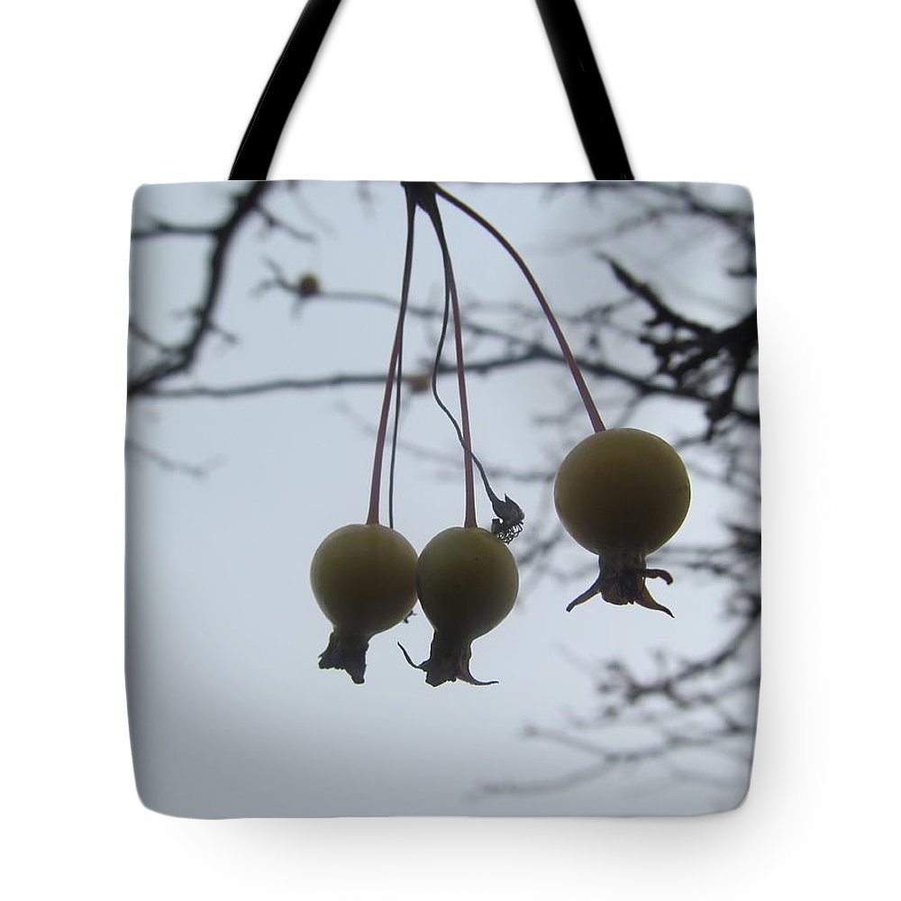 Holly Tote Bag featuring the photograph Windy Yellow Holly Berry Two by Tina M Wenger