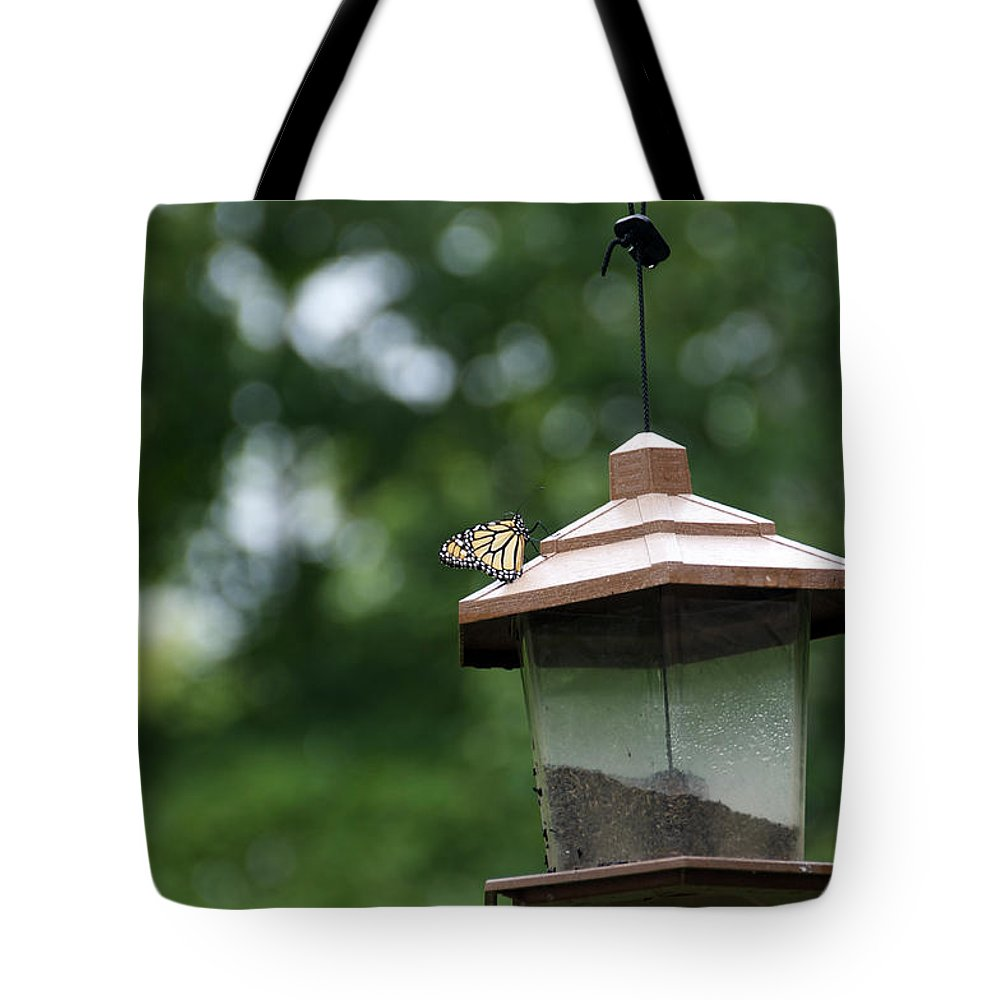 Butterfly Tote Bag featuring the photograph Wings by Elaine Mikkelstrup