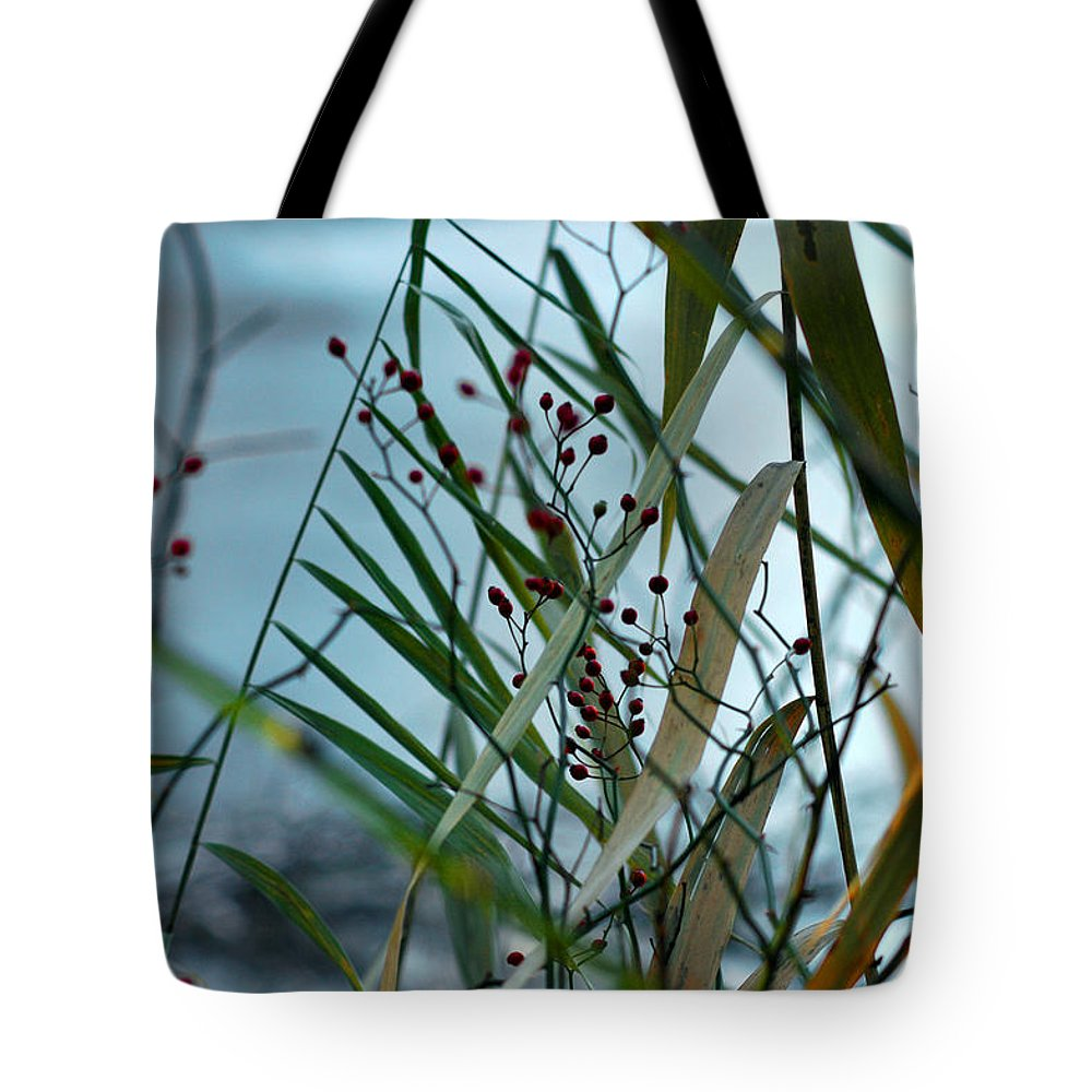 Berries Tote Bag featuring the photograph Winter And Fall Fight by LeeAnn McLaneGoetz McLaneGoetzStudioLLCcom