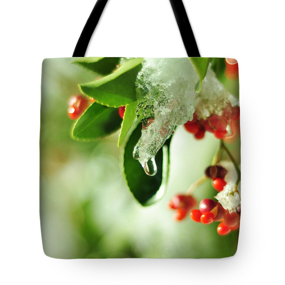 Red Berries Tote Bag featuring the photograph Winter Berries by Rebecca Sherman