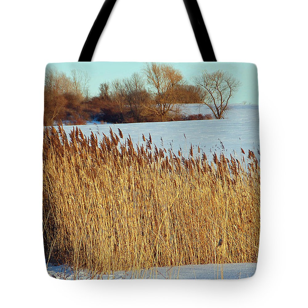 Landscape Tote Bag featuring the photograph Winter Breeze by Aimee L Maher ALM GALLERY