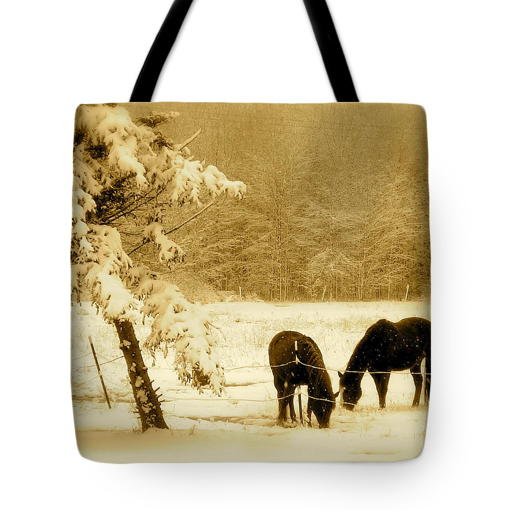 Landscape Tote Bag featuring the photograph Winter Grazing by Arthur Barnes