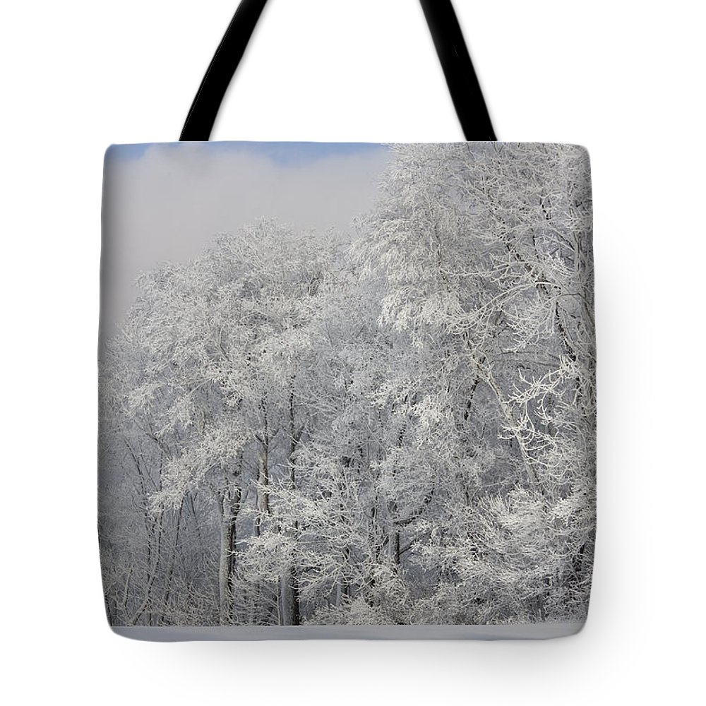Winter Tote Bag featuring the photograph Winter Life by Ron Jones
