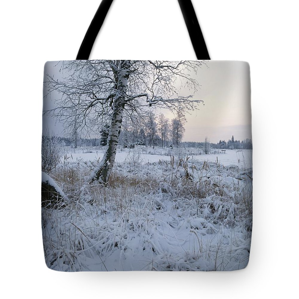 Scenes And Views Tote Bag featuring the photograph Winter Scene With Snow-covered Grasses by Mattias Klum