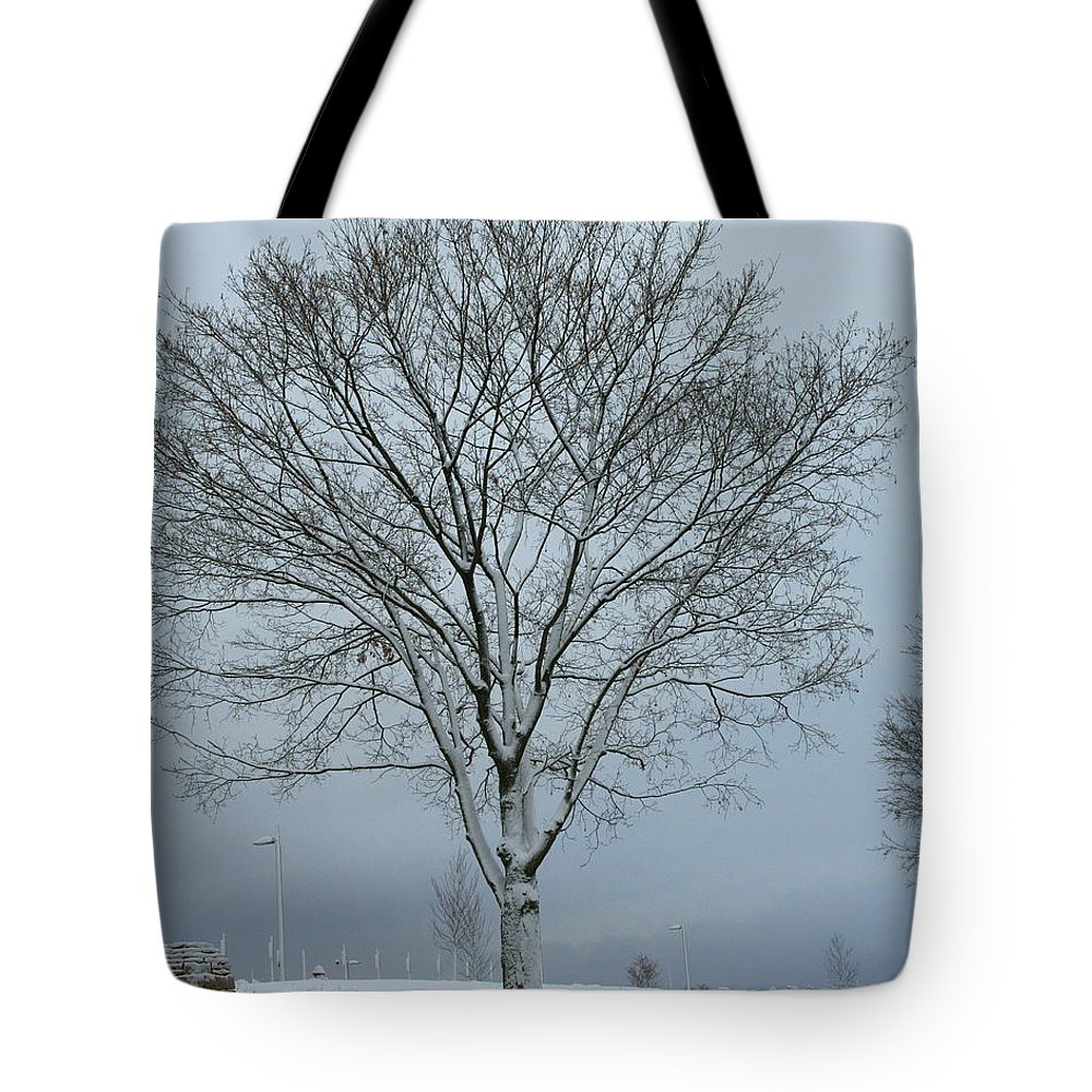 Winter Tote Bag featuring the photograph Winter Tree by Laurel Talabere