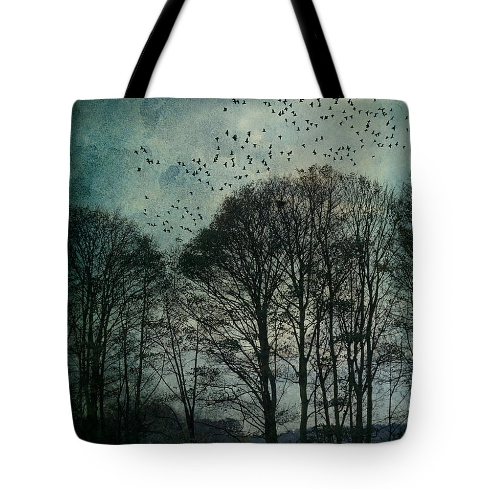 Tree Tote Bag featuring the photograph Winter Trees by Ann Garrett