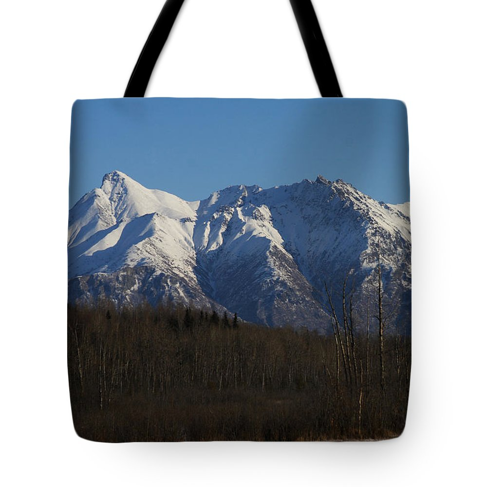 Doug Lloyd Tote Bag featuring the photograph Winter View by Doug Lloyd