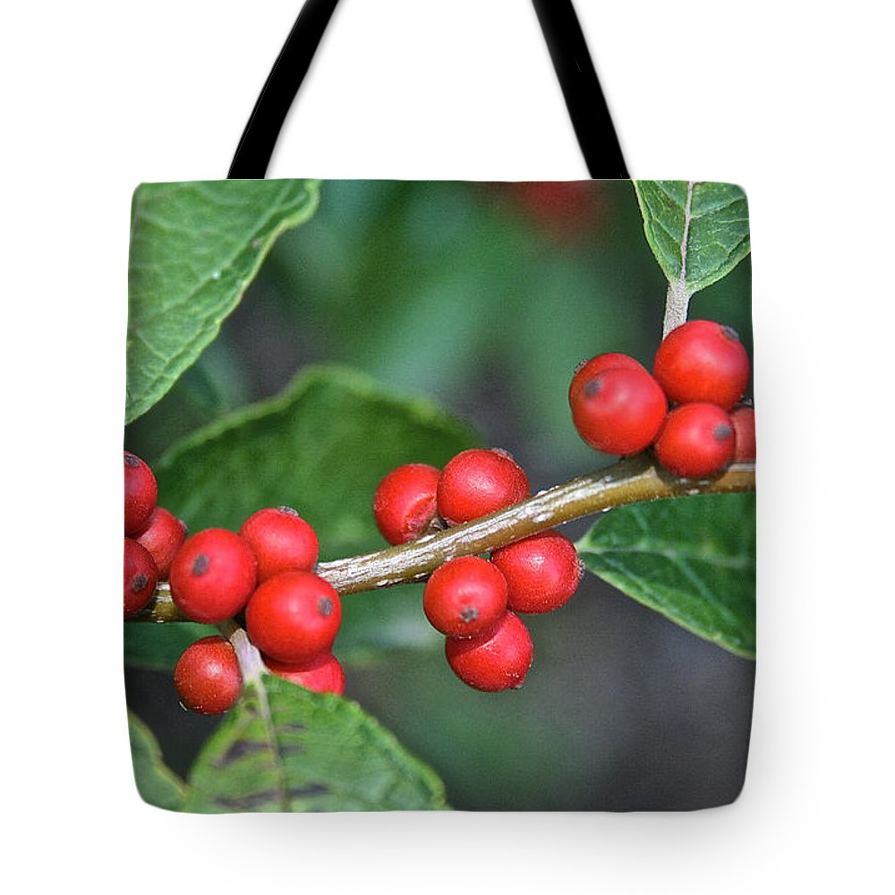 Outdoors Tote Bag featuring the photograph Winterberry by Susan Herber