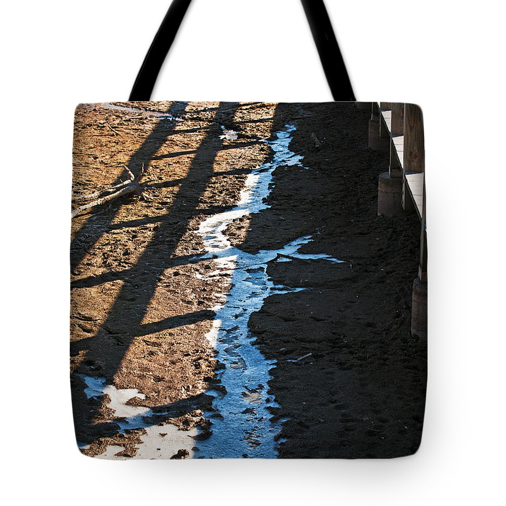 Heron Haven Tote Bag featuring the photograph Winters Approach by Edward Peterson