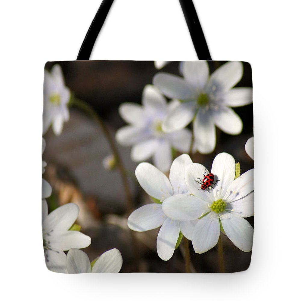 Wildflower Tote Bag featuring the photograph Woodland Flora And Friend by Bill Pevlor