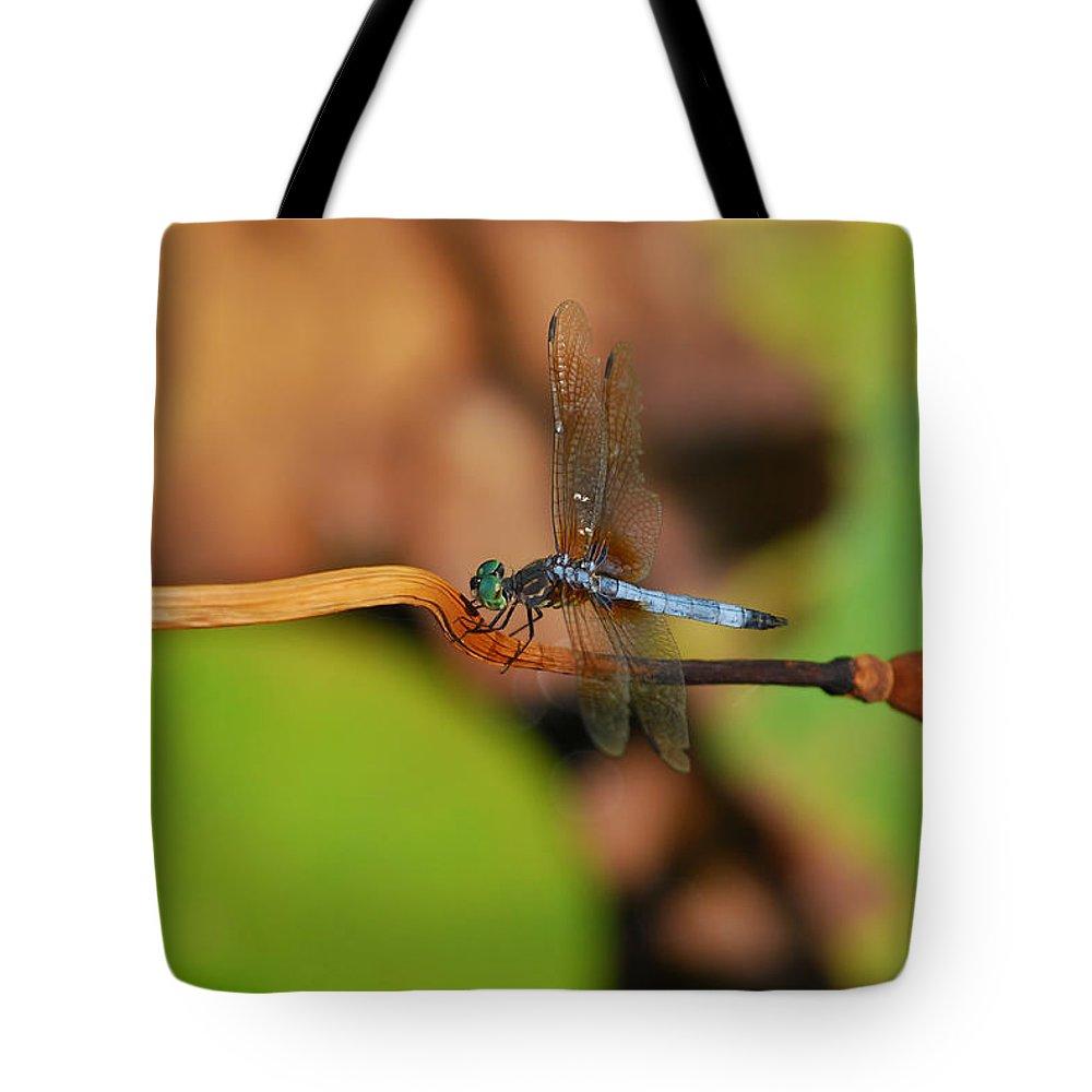 Dragonfly Tote Bag featuring the photograph Wounded Wing by Lori Tambakis
