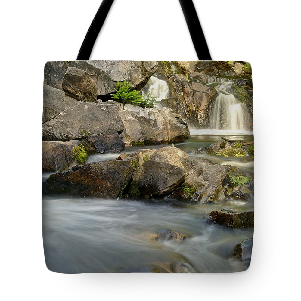 Landscape Tote Bag featuring the photograph Yellow Dog Falls 4246 by Michael Peychich