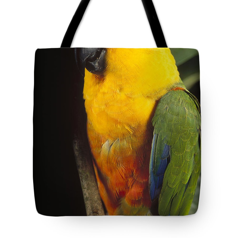 Mp Tote Bag featuring the photograph Yellow-faced Parrot Amazona Xanthops by Claus Meyer