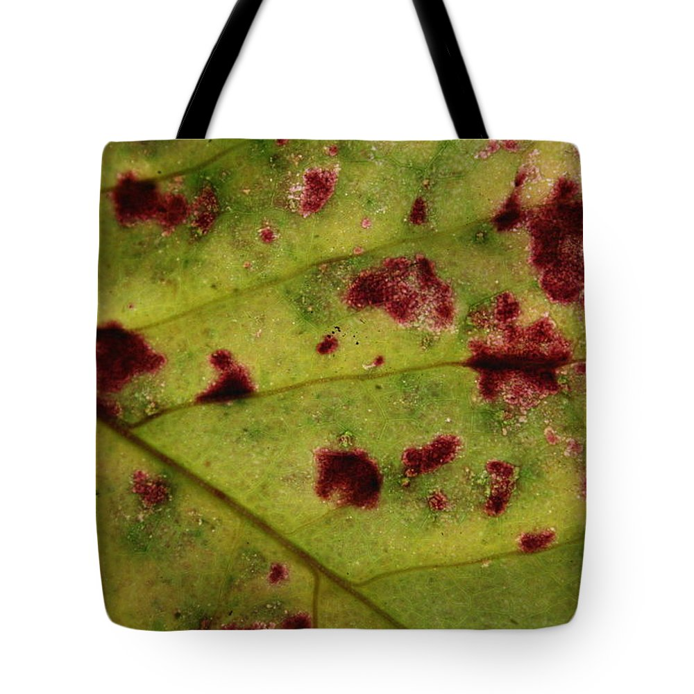 Jennifer Bright Art Tote Bag featuring the photograph Yellow Leaf With Red Spots 2 by Jennifer Bright