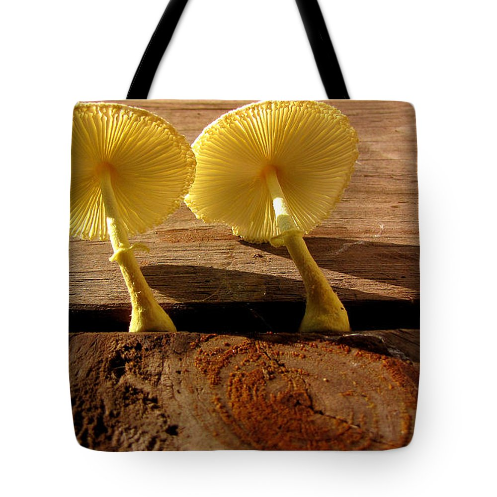 Mushroom Tote Bag featuring the photograph Yellow Mushrooms by Sarah Houser