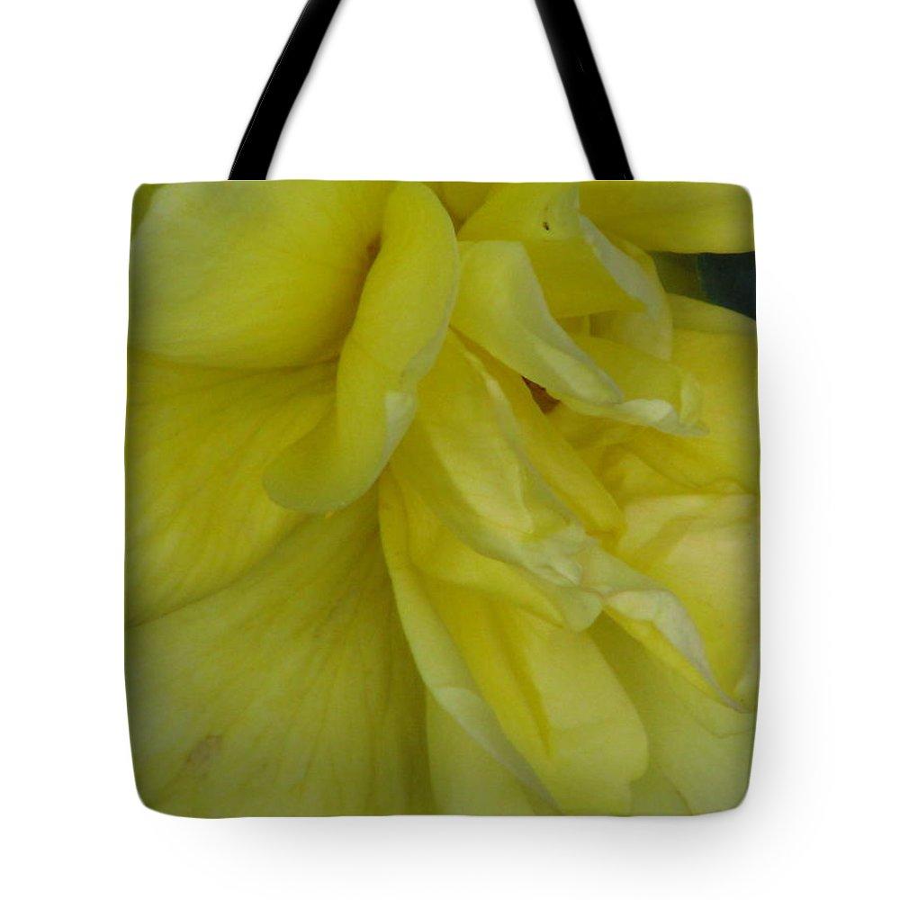 Sviatoslav Tote Bag featuring the photograph Yellow Rose 02 by Sviatoslav Alexakhin