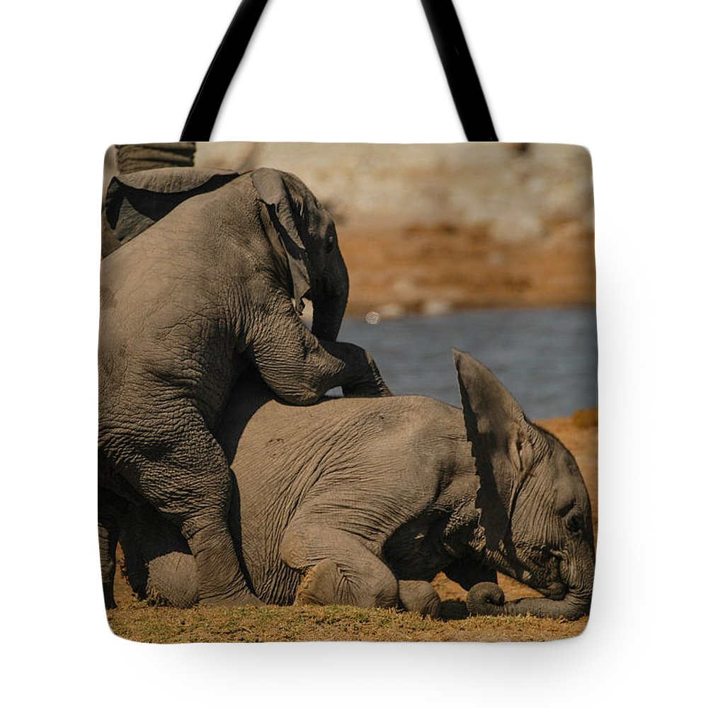 Focussed Tote Bag featuring the photograph You And Me by Alistair Lyne