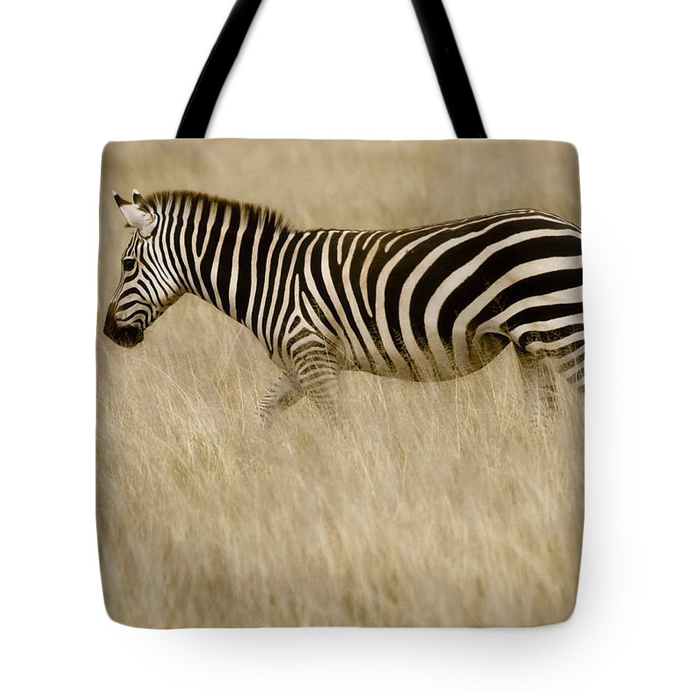 Africa Tote Bag featuring the photograph Zebra In Grasses 2 by Jack Daulton