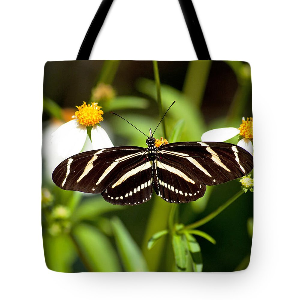 Wildlife Tote Bag featuring the photograph Zebra Longwing And Flowers by Kenneth Albin