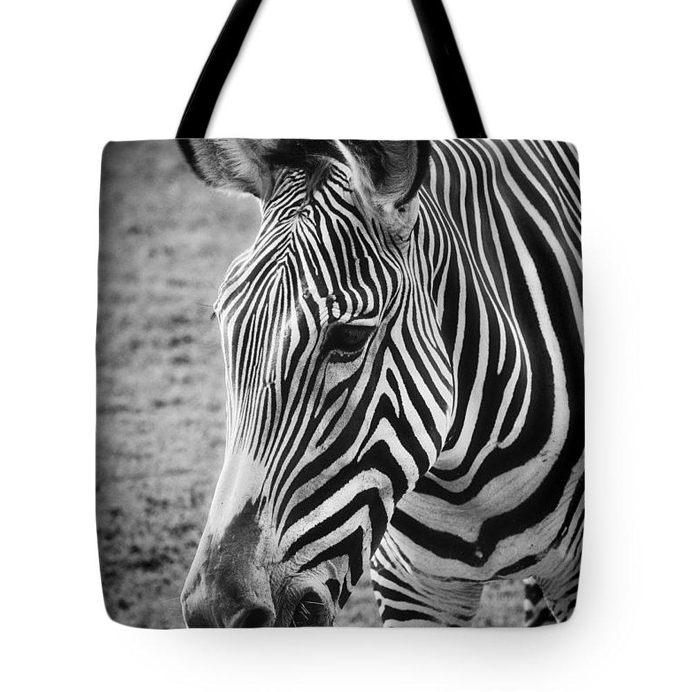 Zebra Tote Bag featuring the photograph Zebra by Saija Lehtonen
