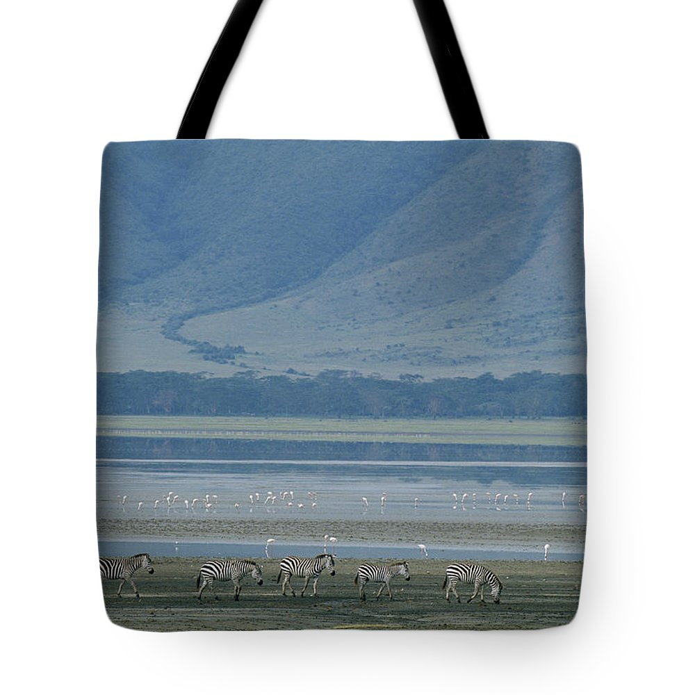 Africa Tote Bag featuring the photograph Zebras And Pink Flamingos, Ngorongoro by Skip Brown
