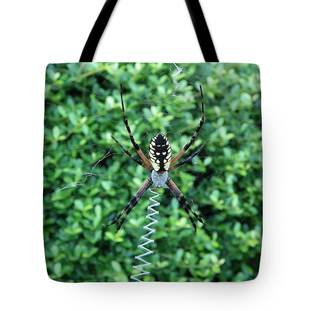 Spider Tote Bag featuring the photograph Zig Zag by Chad and Stacey Hall