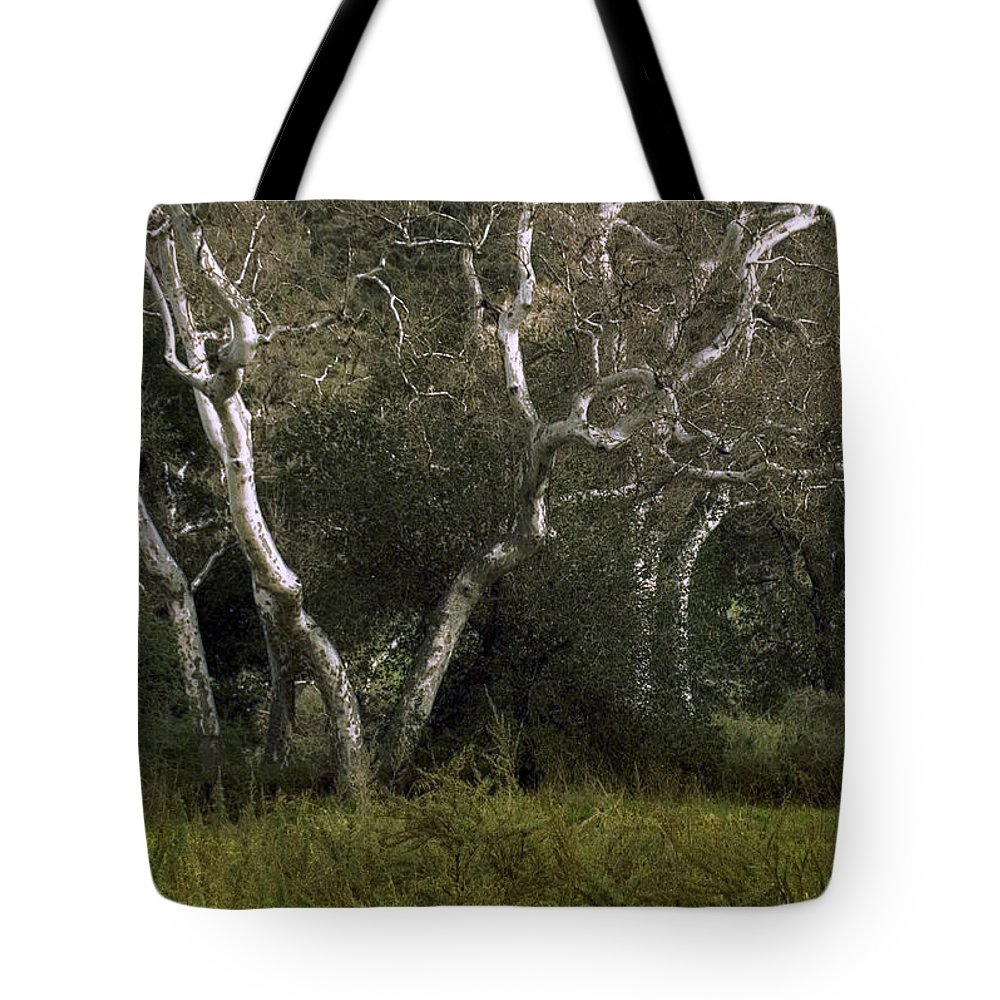 Tree Tote Bag featuring the photograph Dv Creek Trees by Karen W Meyer
