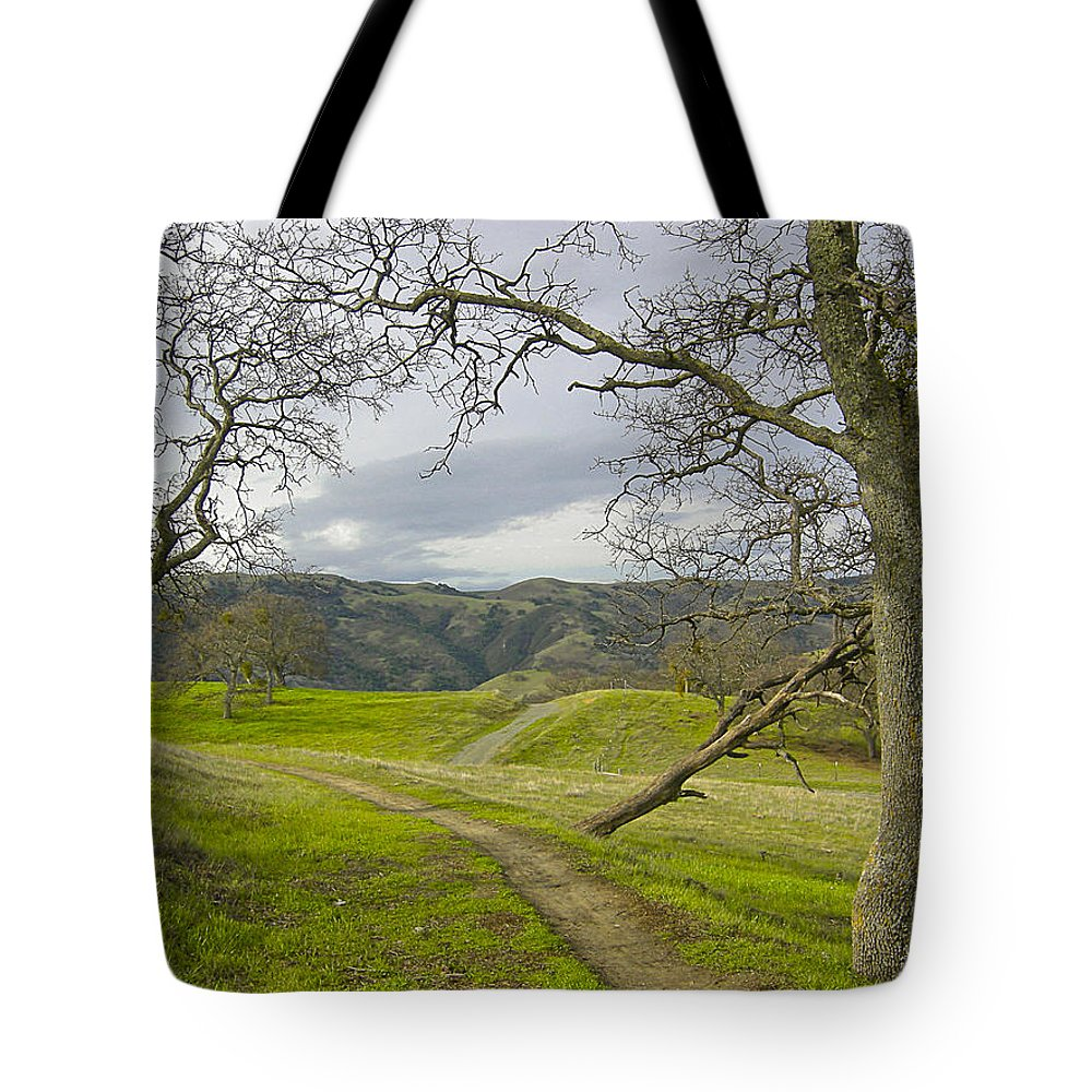 Landscape Tote Bag featuring the photograph East Ridge Trail Spring by Karen W Meyer