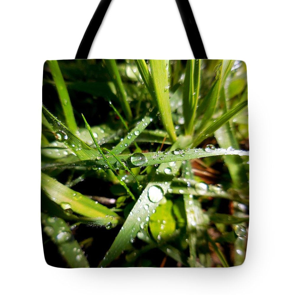 Lood Down For Beauty Tote Bag featuring the photograph Look Down For Beauty by Chris Gudger