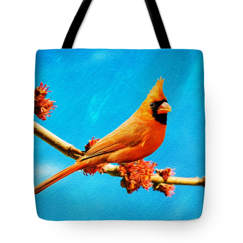 Northern Cardinal Tote Bag featuring the photograph Male Northern Cardinal Perched On Tree Branch by Laura D Young