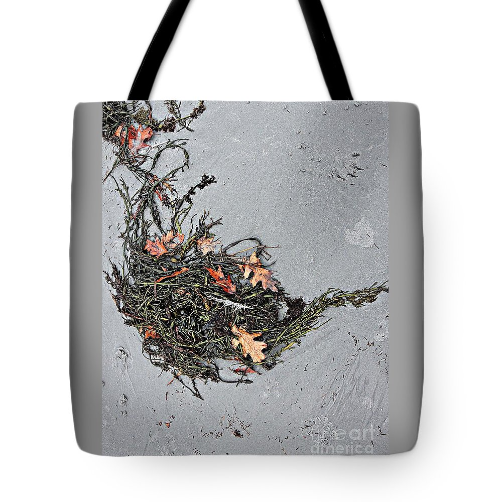 Natural Tote Bag featuring the photograph Natures Teapot # 2 by Marcia Lee Jones
