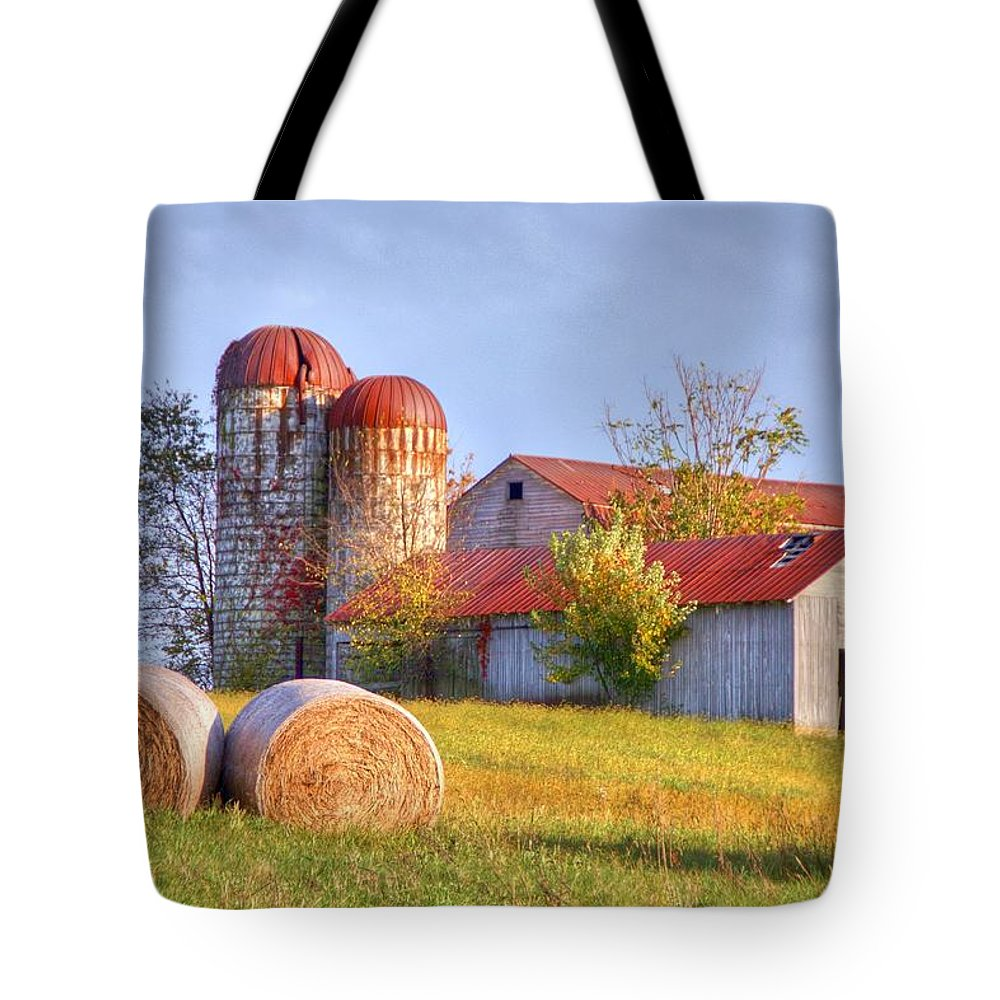 Barn Tote Bag featuring the photograph Two by Mitch Cat
